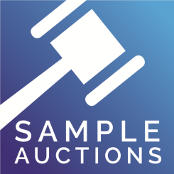 Sample Auctions
